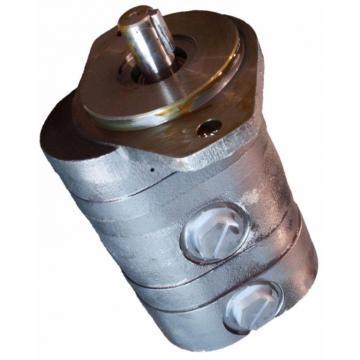 Case 161025A1 Hydraulic Final Drive Motor