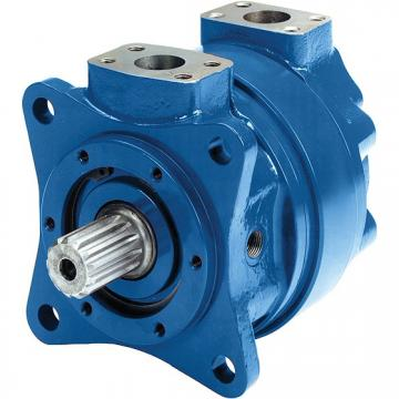 Sany SY215 Hydraulic Final Drive Motor